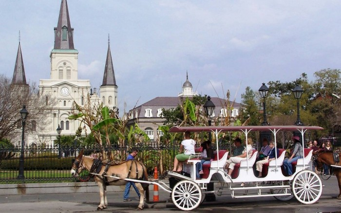 Carriage-Travel-New-Orleans-Louisiana-United-States