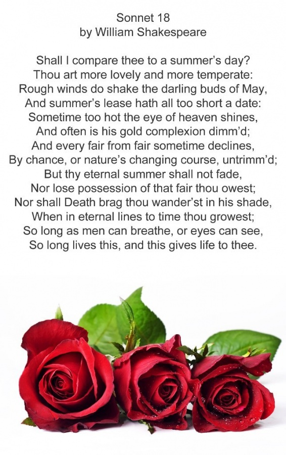 Most famous shakespearean sonnets
