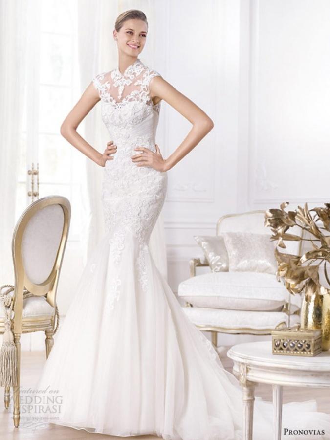 stunning-pronovias-2014-wedding-dresses-pre-collection-13