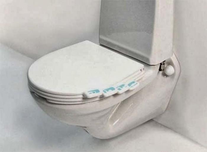 unique idea for your toilet seat
