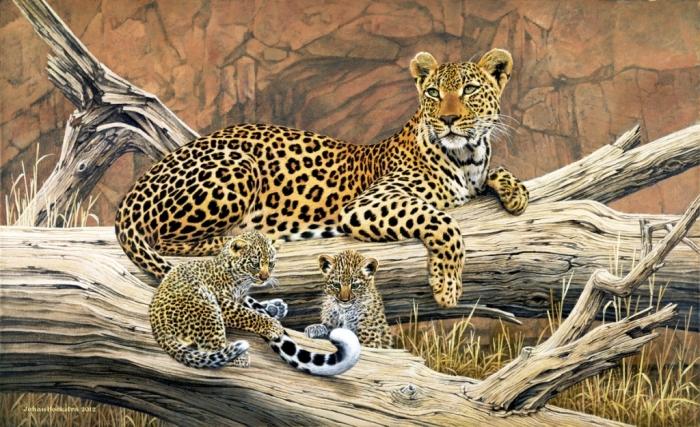 leopard-and-cubs-2012-johan-hoekstra-wildlife-art-available-print