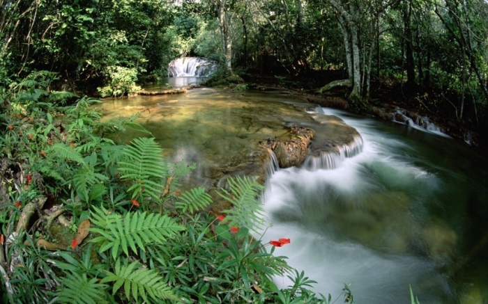 Brazil Limestone springs and waterfalls, Serra de Bodoquena at Mato Grosso, Brazil