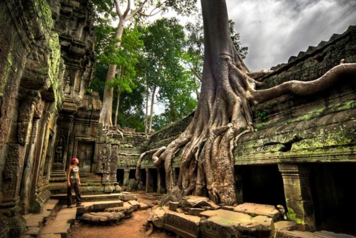 Cambodia  Ta-Prohm-temple-Cambodia