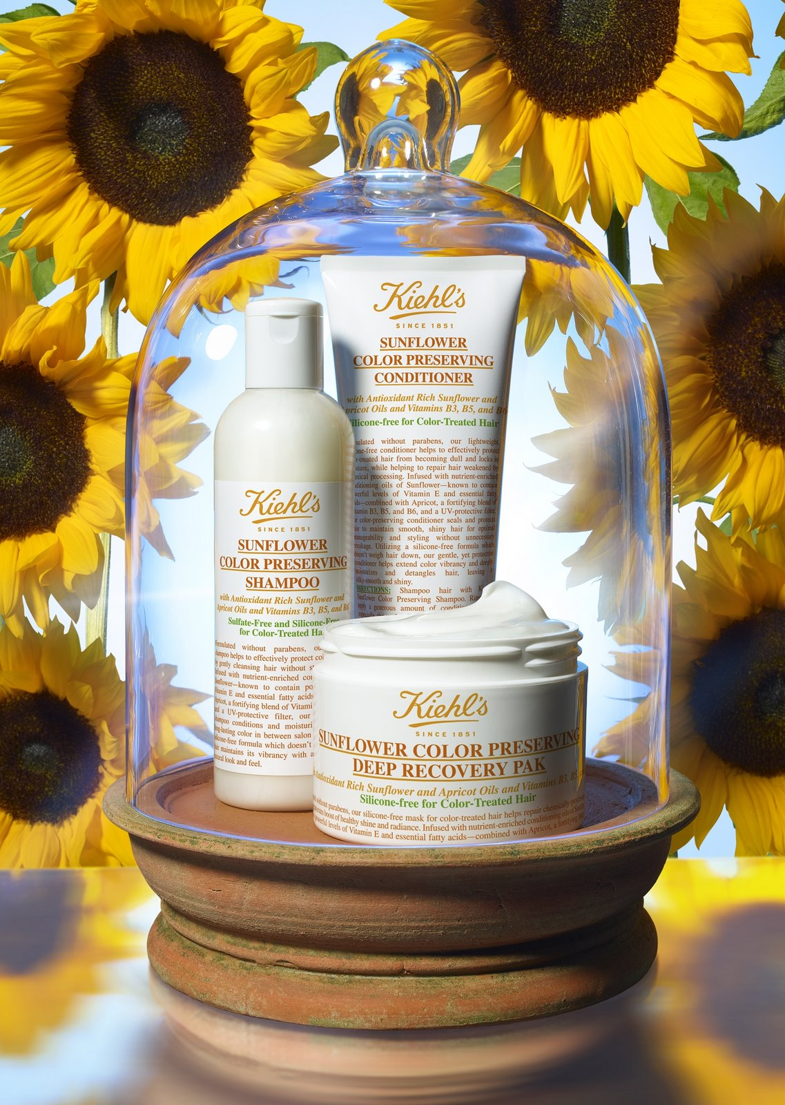Kiehl's-Sunflower-Color-Preserving-Hair-Care-Collection