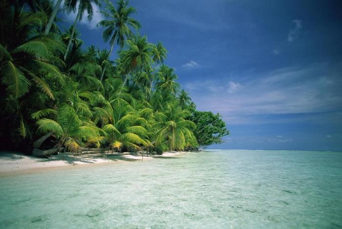 Papua New Guinea palm-tree-lined-beach-papua-new-guinea-kevin-deacon