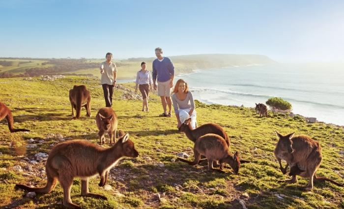 australia background_Stokes-Bay