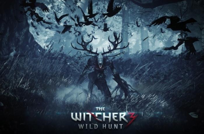 Witcher-31