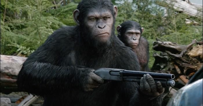 7 apes