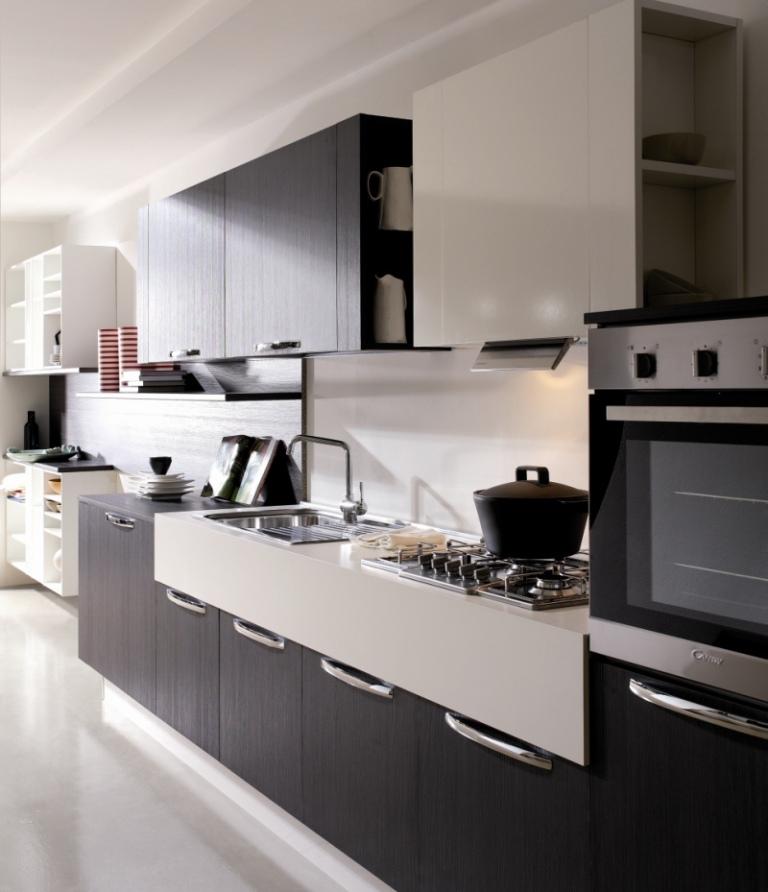 modern-kitchen-cabinets-erika