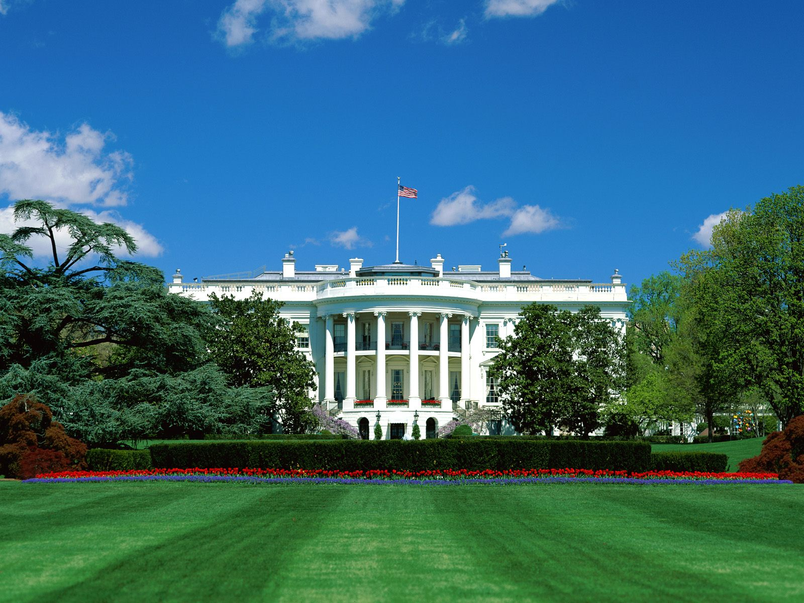 8   The White House (Washington)