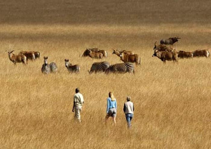 Nyika Plateau National Park, Malawi
