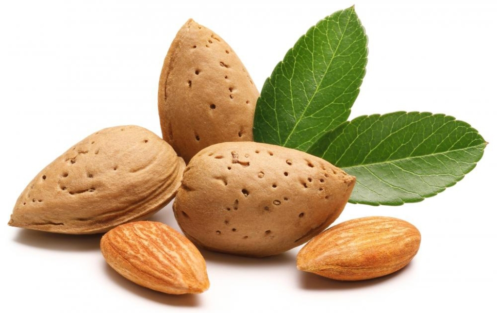 almonds-in-the-shell-and-shelled