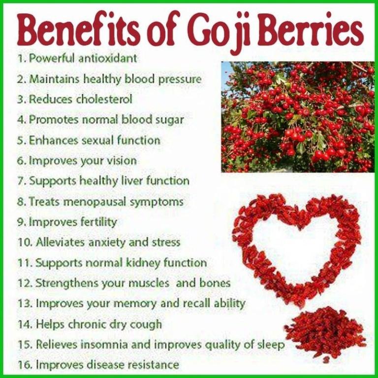 benefit-of-goji-berry