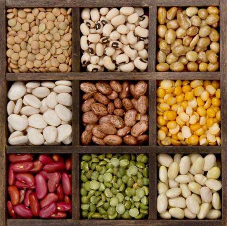 bountiful-beans
