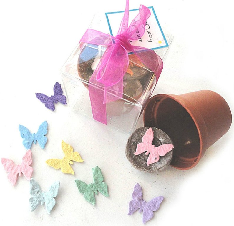 party_favors_seed_paper_butterfly__52183.1405436255.1280.1280