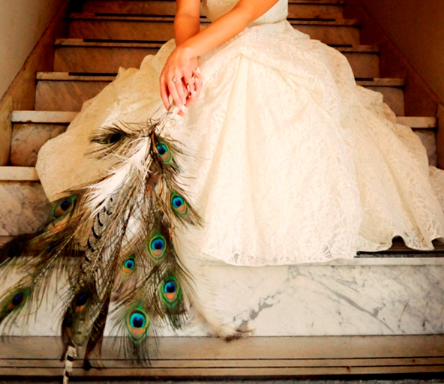 vintage-bride-peacock-feathers