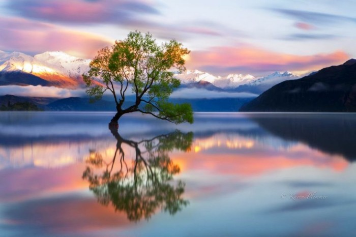 wanaka-new-zealand