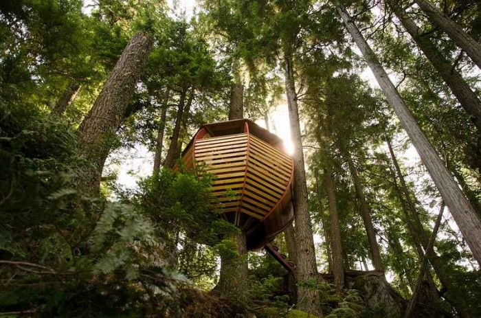 Photo of Top 10 Best Flying Tree Houses In The World