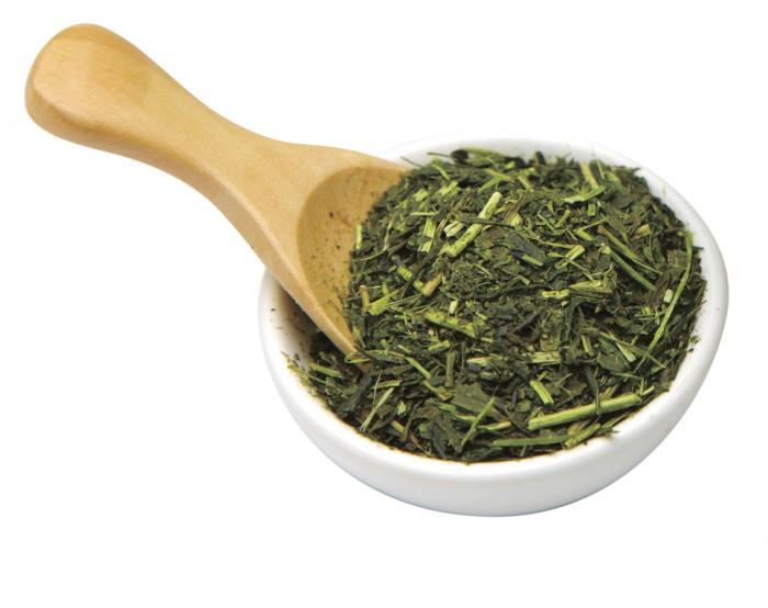 Green tea and the brain