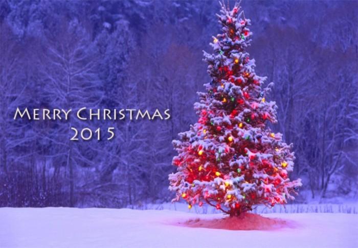 Merry-christmas-2015