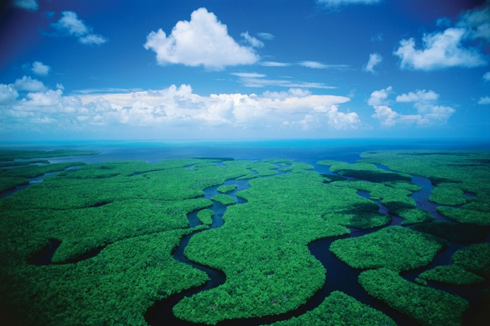 florida_boat_tours_bkgd