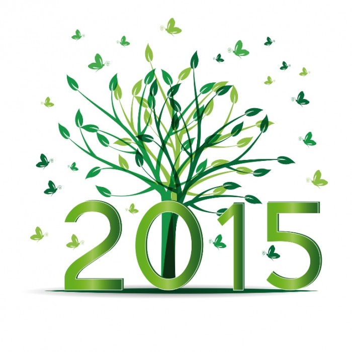 happy-new-year-2015-free-HD-wallpaper
