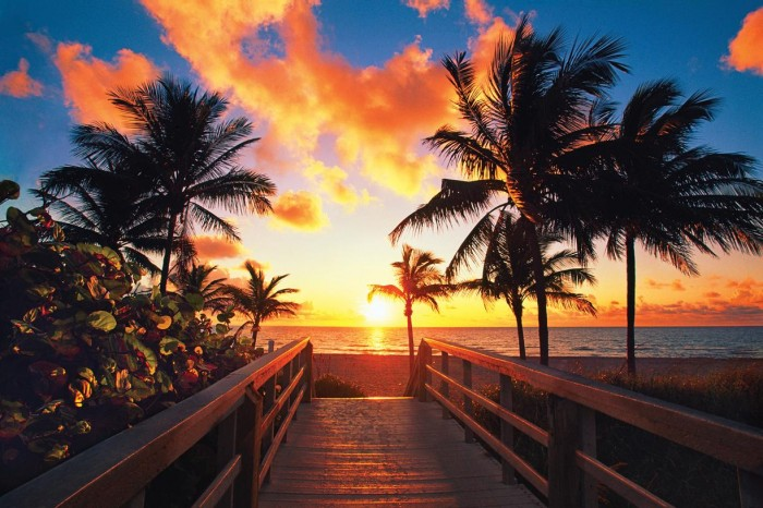 whats-new-in-greater-fort-lauderdale-jpg