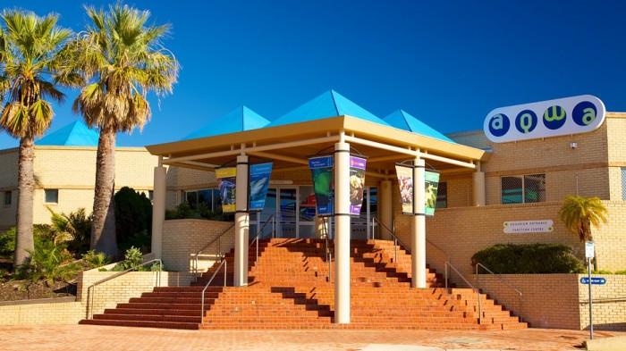 Aquarium-Of-Western-Australia-Aqwa-40128