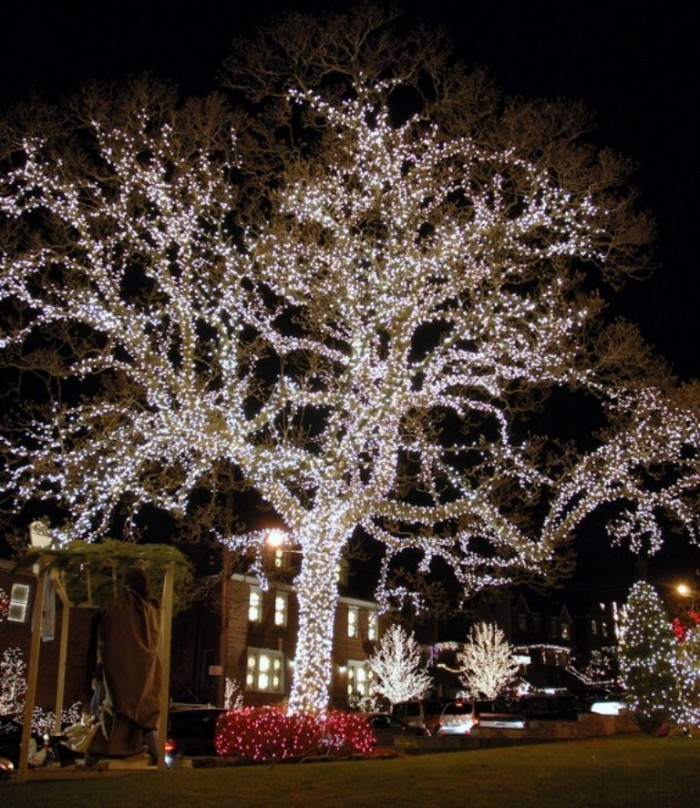 ChristmasLights-Outside-Trees & Top 10 Outdoor Christmas Light Ideas azcodes.com