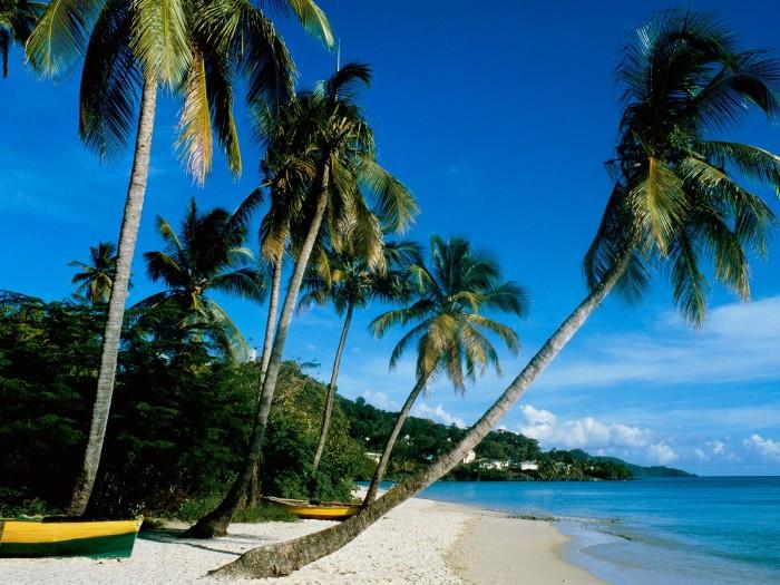Grand-Anse-Beach-La-Digue-Island-Seychelles-02