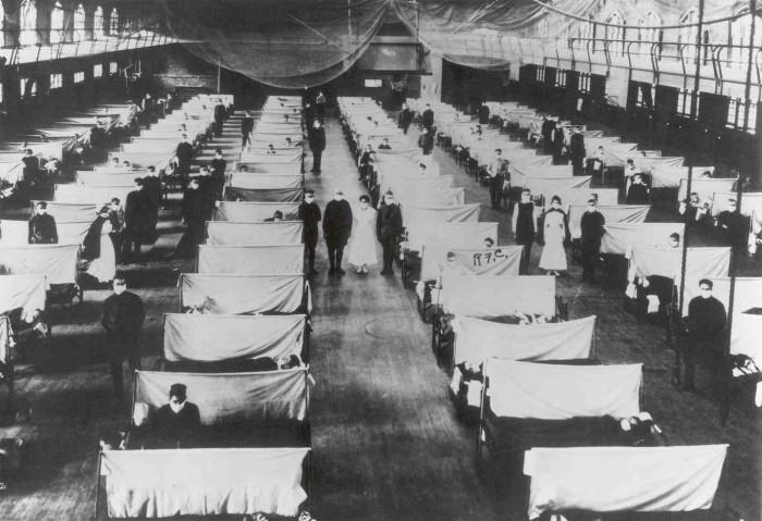 The Spanish Influenza (1918)