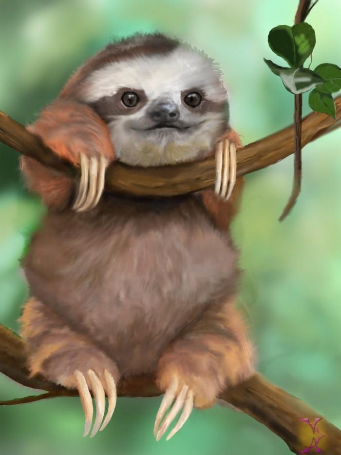 baby_sloth_by_violetadams-d6dbtl7