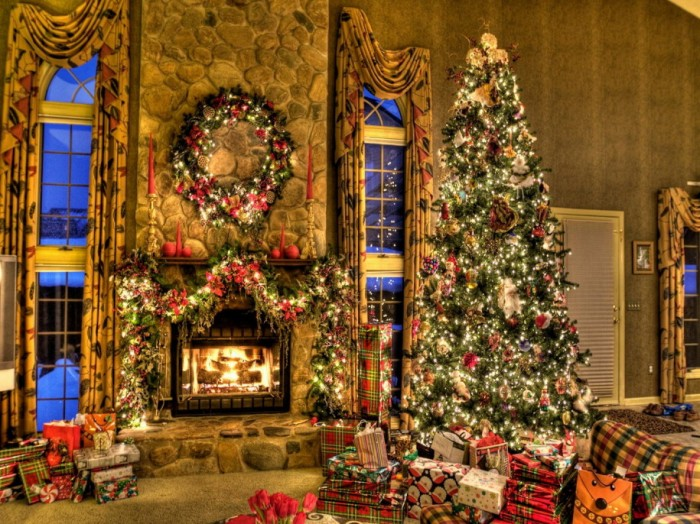 Top 10 most suitable flowers for the Christmas