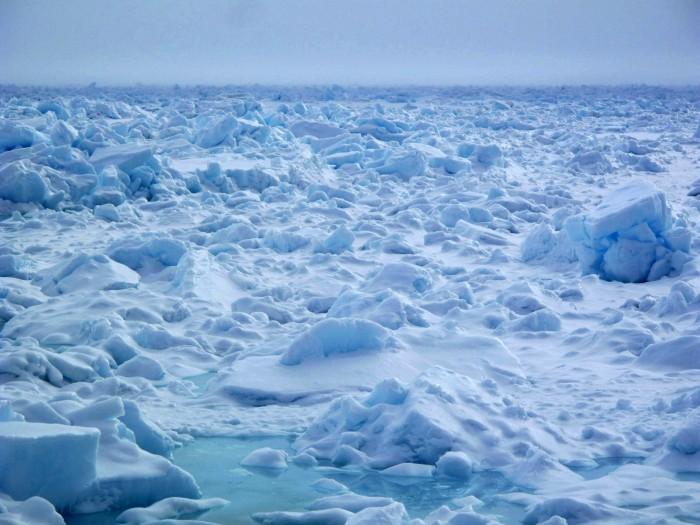 2. sea ice