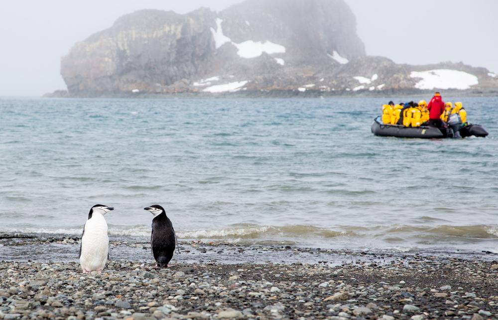 20140101-Antarctica-1155