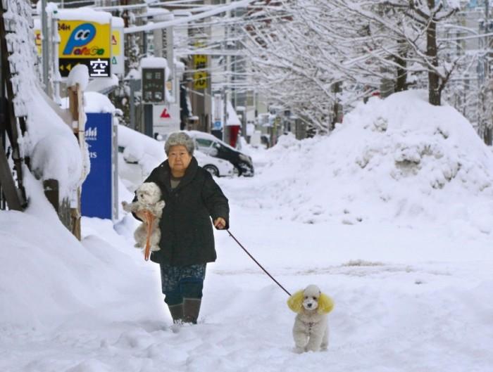 Aomori City, Tōhoku, Japan
