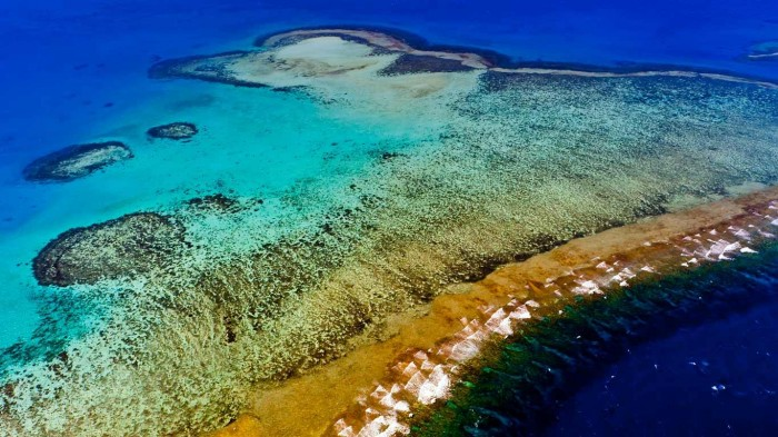 New Caledonia Barrier Reef