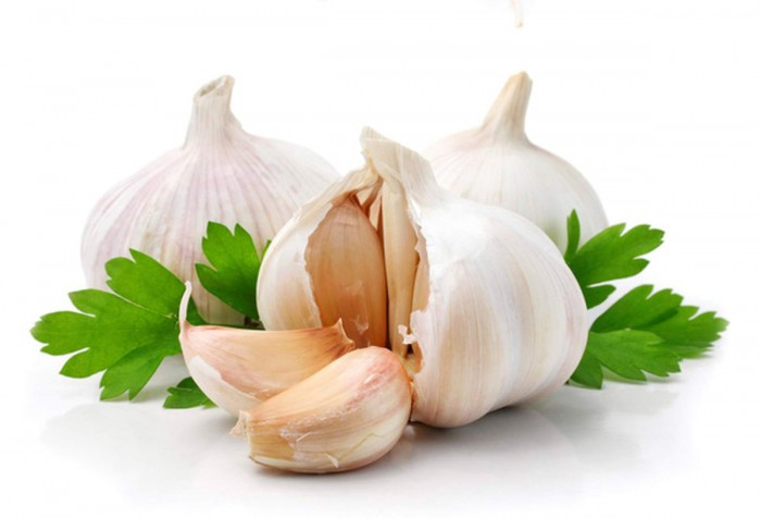 garlic-02