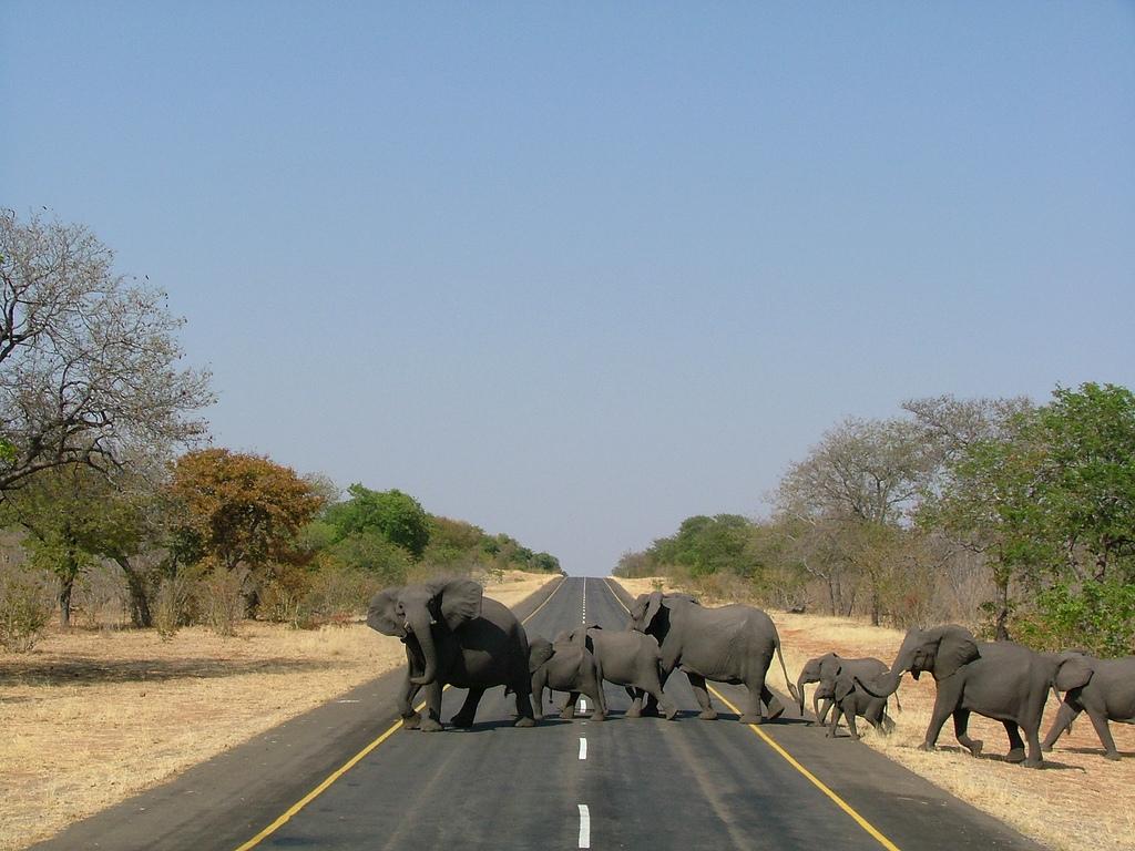 - Namibia