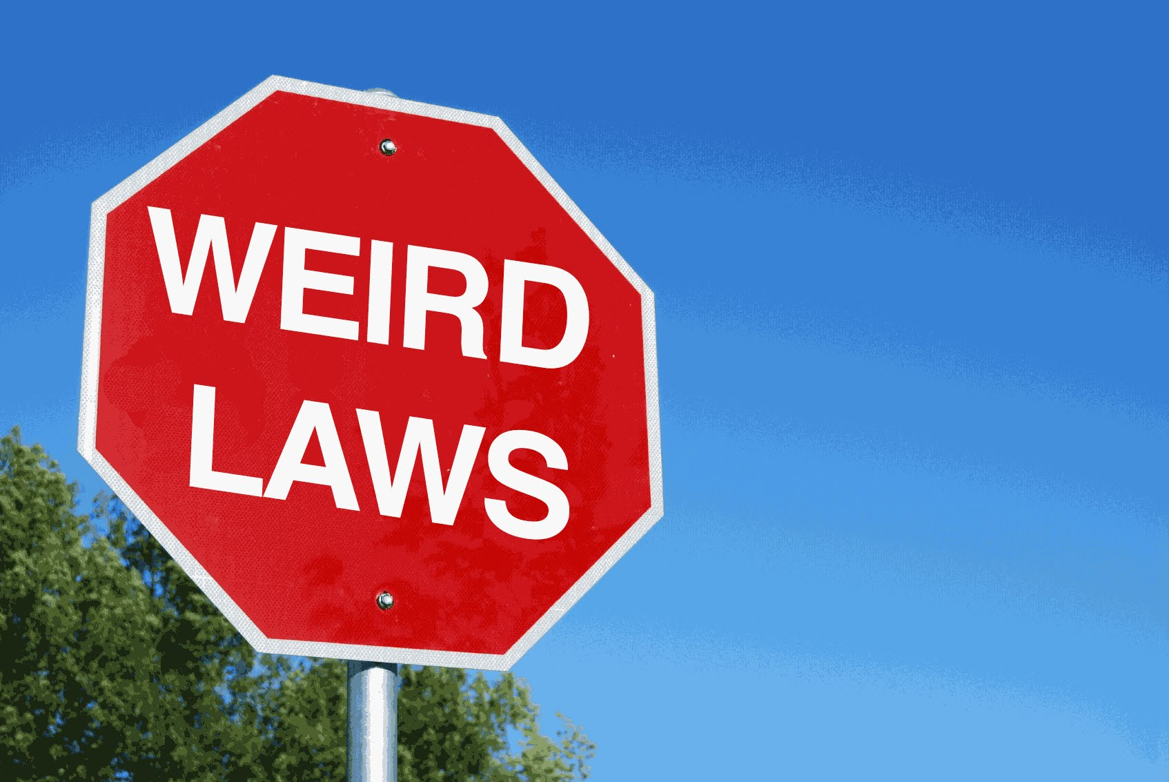 Photo of Top 10 Oddest Laws In USA