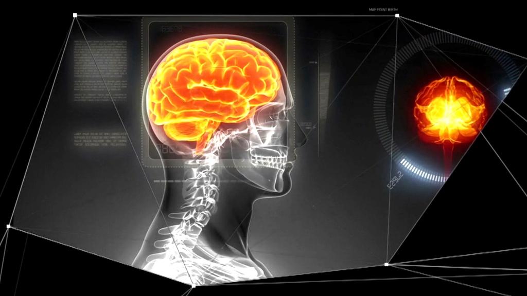 human-brain-project