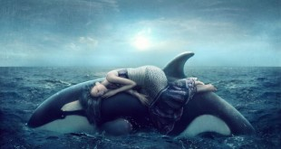 Top 10 Most Amazing Facts About Dreams