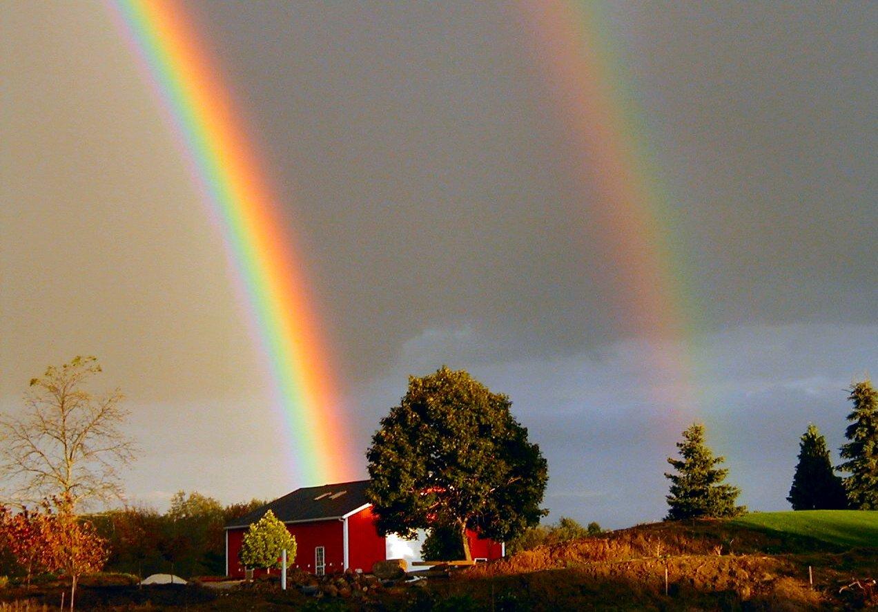 two rainbow