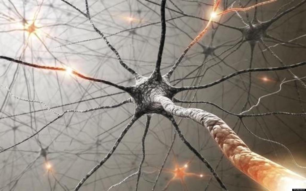 The drugs damage the brain and kill its cells forever