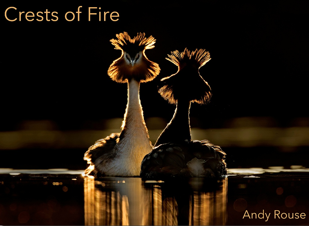 Crests of Fire by Andy Rouse