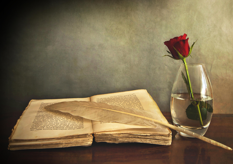 Top 10 Most Popular Stream of Consciousness Books