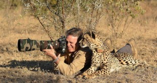 Top 10 Best & Most Professional Wildlife Photographers
