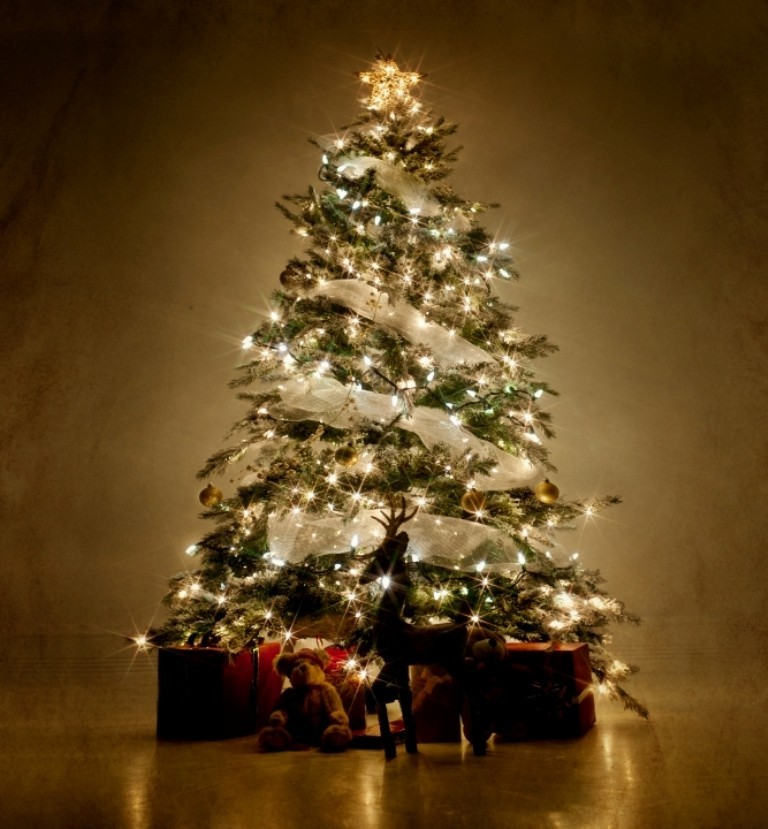 christmas tree decorating ideas (13)