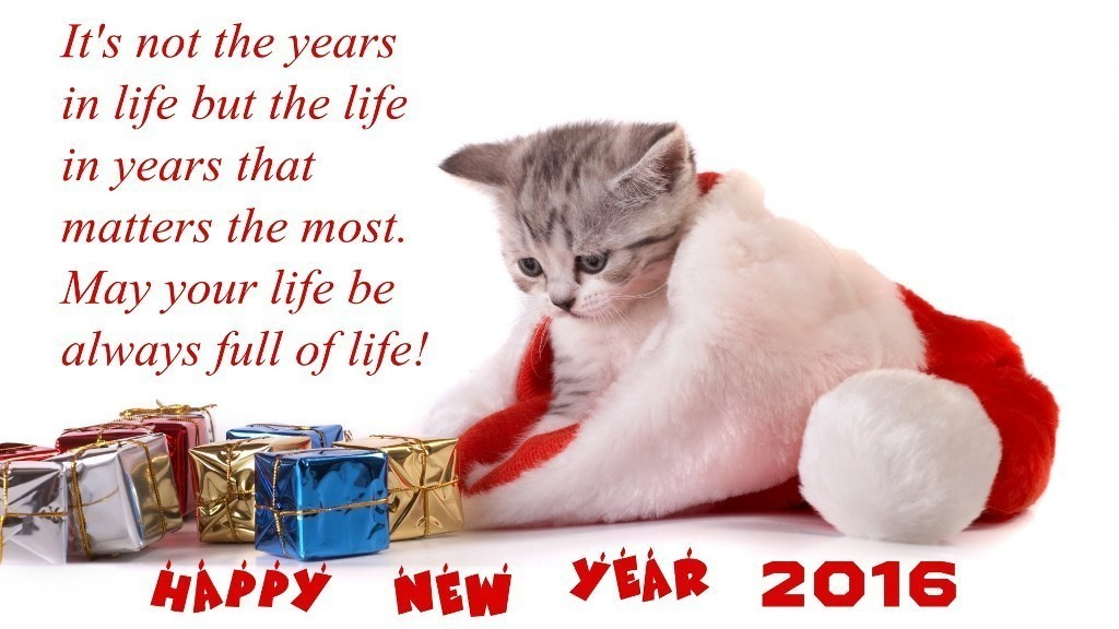 new year wishes 2016 (36)