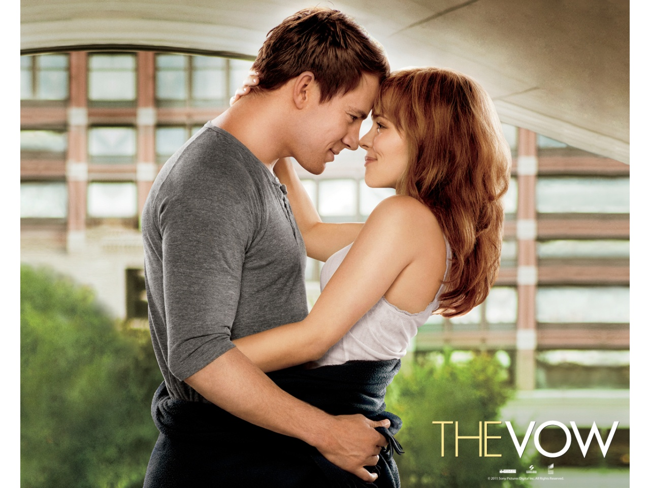 493517-the-vow